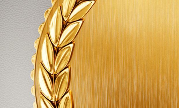 Gold Award - Tecta America