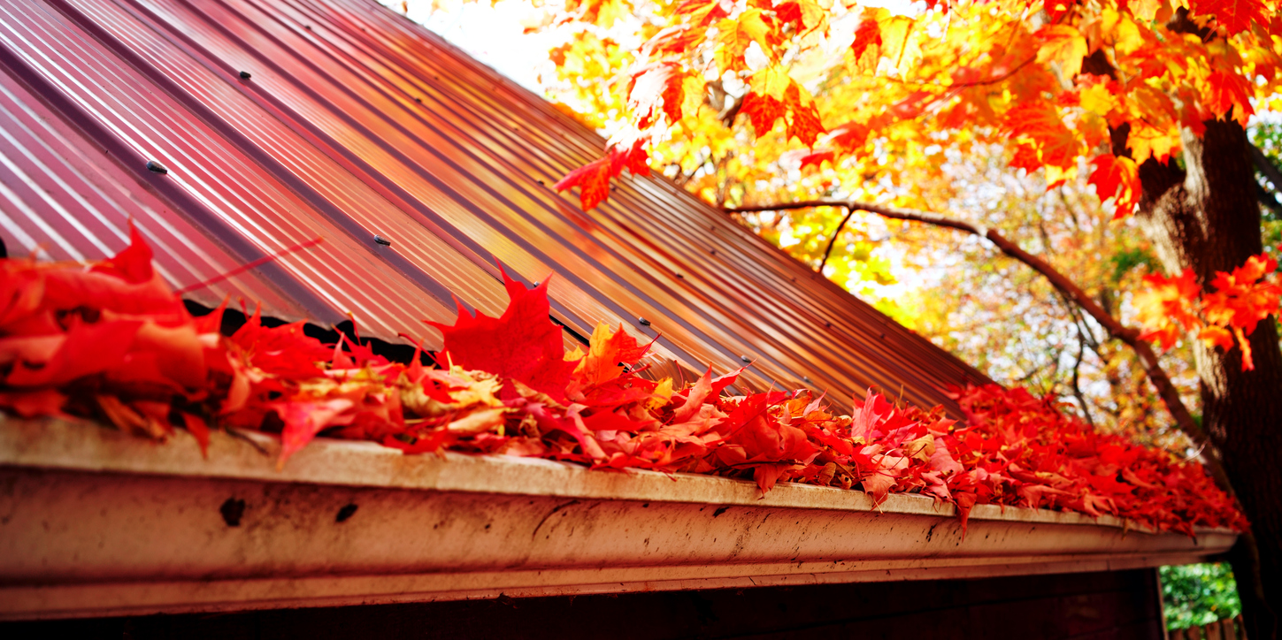 Tecta America Commerical roofing fallen leaves prevention