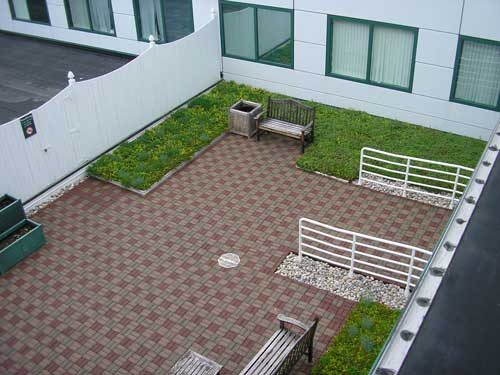 green-roofing-1