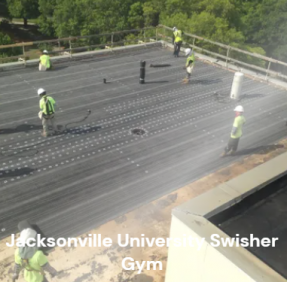 Jacksonville University swisher